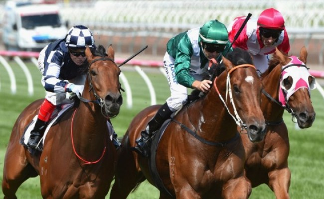 Seven And Racing Victoria Shake Up Horse Racing With Hong