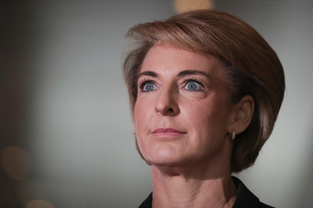 Minister for Jobs and Innovation Michaelia Cash did not respond to requests for comment on Mr Husic's criticism.