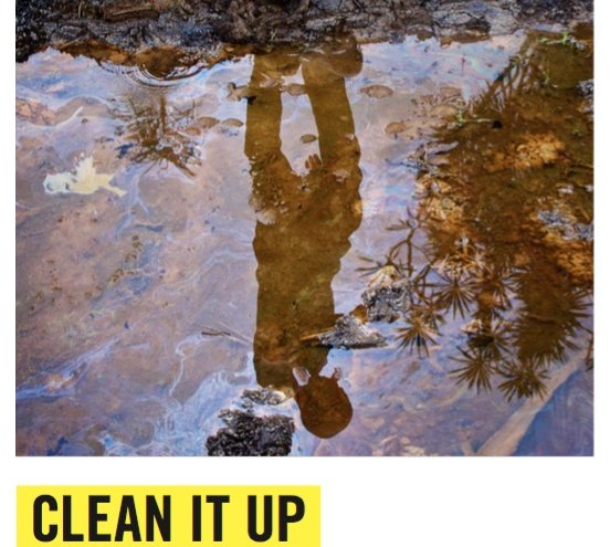 Clean it up (pulisci) Campagna di Amnesty International per invitare la Shell a pulire le aree inquinate del delta del Niger