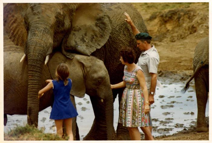 David Sheldrick, Daphne e la loro figlia Angela con elefanti orfani nel 1973. © The David Sheldrick Wildlife Trust