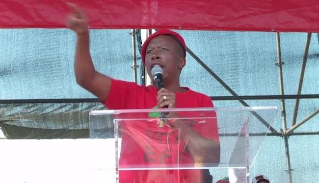 Julius Malema, leader dei Combattenti per la Libertà Economica
