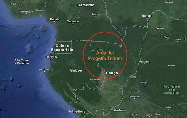 Nella mappa, il cerchio rosso indica l'area del progetto Tridom dove vivono i pigmei Baka
