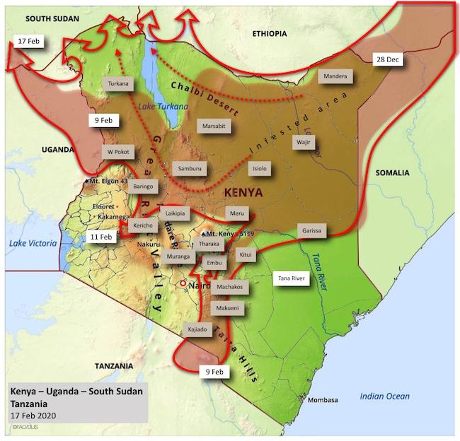Mappa dell'invasione delle cavallette in Est Africa aggiornata al 17 febbraio 2020 (Courtesy FAO)