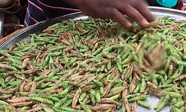 Vendita delle cavallette (nsenene) in un mercato in Uganda