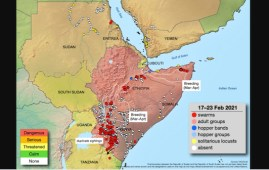 cavallette Africa map FAO 23feb2021