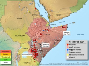 cavallette Africa map FAO 23feb2021