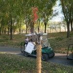 [ゴルフ]ホールインワンを達成したコースで4年ぶりにプレー(涿州东京都颐和城高尔夫俱乐部)