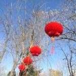 [北京観光]爆竹や花火の音がしない春節(大观园庙会)