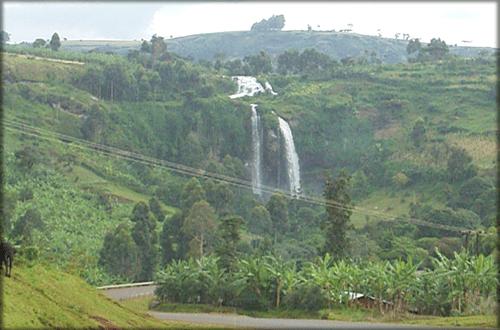 Mt.Elgon National park Uganda
