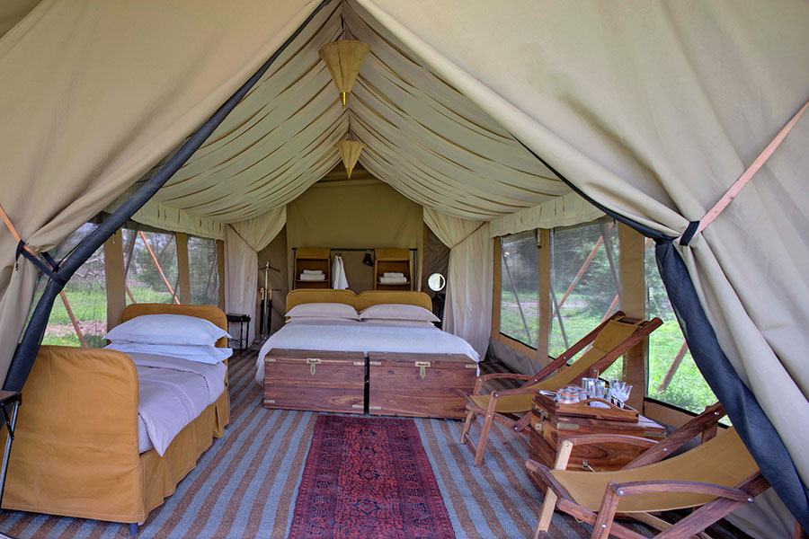 Beyond Serengeti Under Canvas  Africa Endeavours