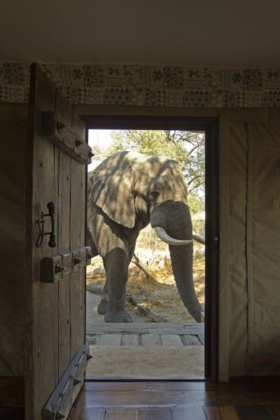 A visitor at the door of your luxury accommodation.