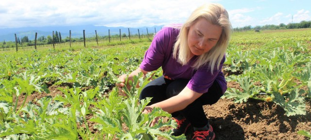 Irina Vasilyeva's farm in western Georgia, is being used as a model for agricultural training.