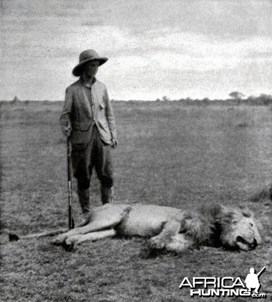 Kermit Roosevelt and his big lion  Hunting