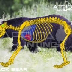 Black Bear Vitals Diagram Crutchfield Wiring Hunting | Africahunting.com