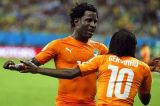 Ivory Coast international  Wilfried Bony to play for Manchester City