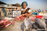 For the Future of Fisheries in West-Africa