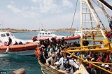 More Than 2,600 Gambians in Italy Camps 73 Percent Asylum Applicants Rejected At First Go
