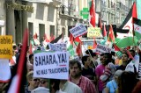 Minister Maite Nkoana-Mashabane Reiterates Calls for Palestinian and Western Saharawi Freedom