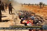 Iraqi forces wage psychological war with jihadist corpses