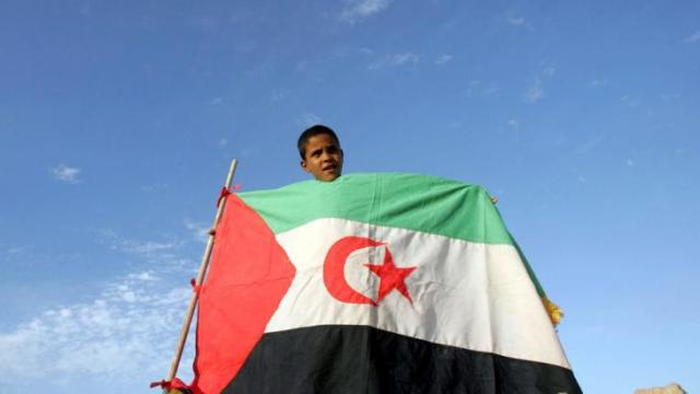 Western Sahara-4