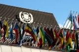 United Nations Organisation Prepares Security Reinforcement