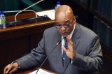 Jacob Zuma has broken Parliament and the Constitution: Democratic Alliance