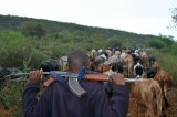 10 Killed in Battle over Grazing Land in Kenya