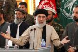Hezb-i-Islami leader calls for peace with Taliban fighters and says the Western-backed government is 'not working'