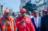 Nelson Chamisa plots Mnangagwa, Zimbabwe Electoral Commission showdown