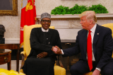 """I Never Want To Meet Someone So Lifeless Again"" – Trump told White House Aides after Meeting With Buhari"