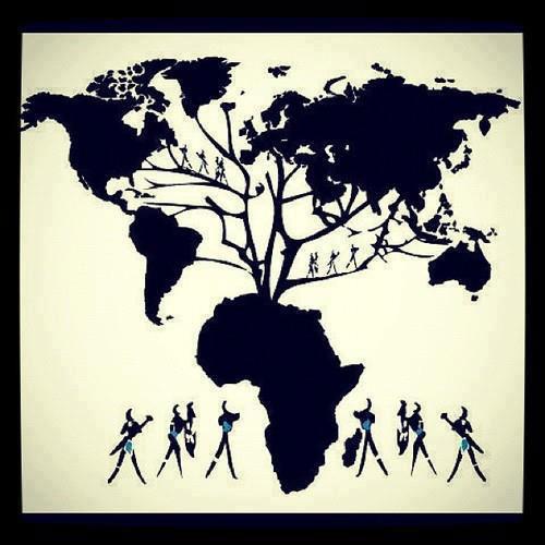 albero-forte-africa