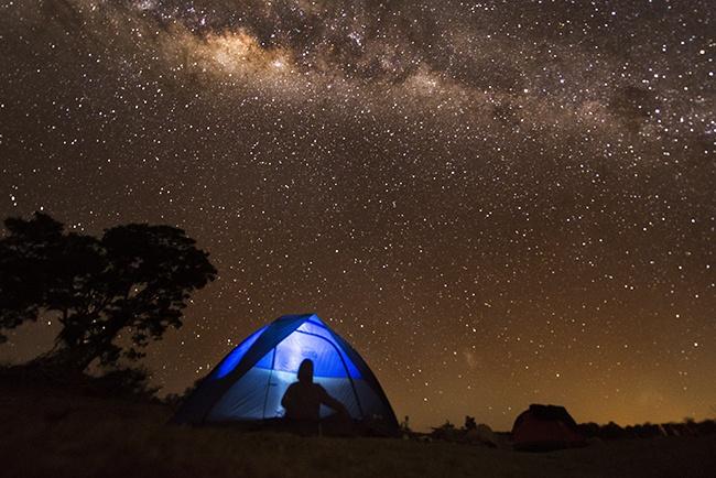 Watching the Milky Way Galaxy