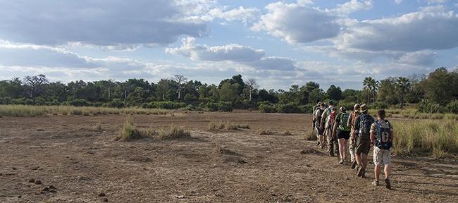 Walking Safari Kruger
