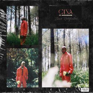 Ciza & DJ Maphorisa - Bank Notification ft. Madumane