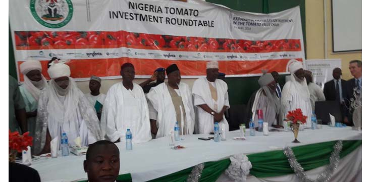 Highlights of TechnoServe's maiden tomato investment roundtable