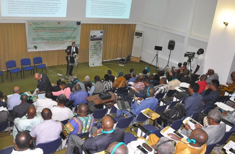 AU-IBAR: Transforming Africa`s veterinary sector for improved livestock value-chain development
