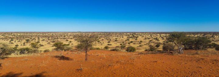 Photo :Kalahari desert -South Africa