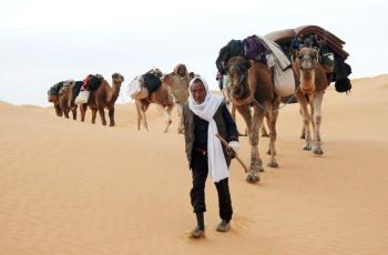 Berber man with his caravane in tunisian desert