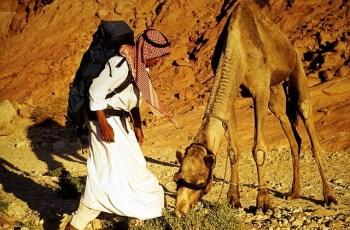 Sinai desert: Bedouin