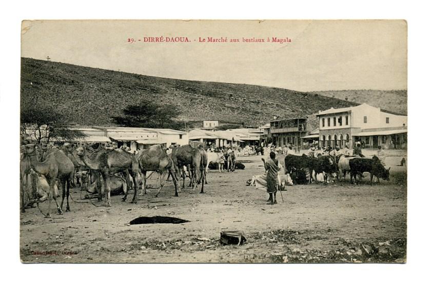 MARCHAND-Alexandre-Carte-postale-Djibouti-19130709-Recto-120515s