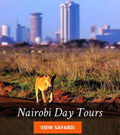 Nairobi Day Tours