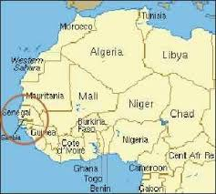 Group Protests Confinement Of Gambian Journalist