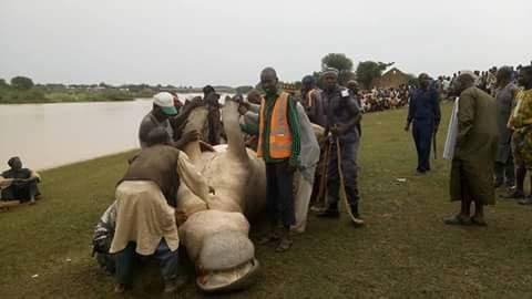 Villagers Kill Notorious Hippo, Share Meat In Northern Nigeria