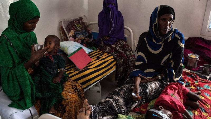 Canada Responses To UN Plead To Fight Starvation In Nigeria, Yemen, Somalia, Sudan