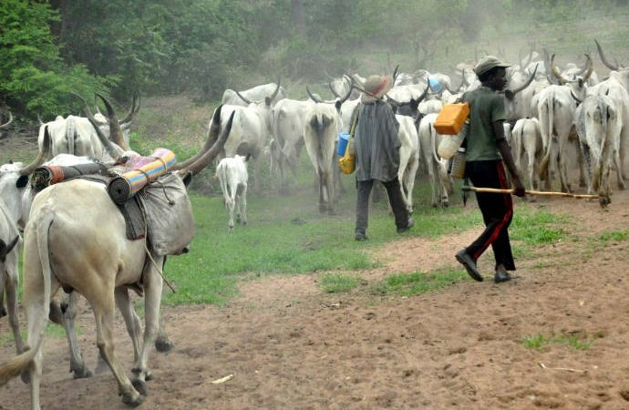 Herdsmen/Farmers Clashes: Nigerian Laboratory Scientist ready to offer solution to President Buhari