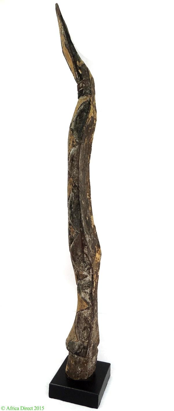 African Baga Snake