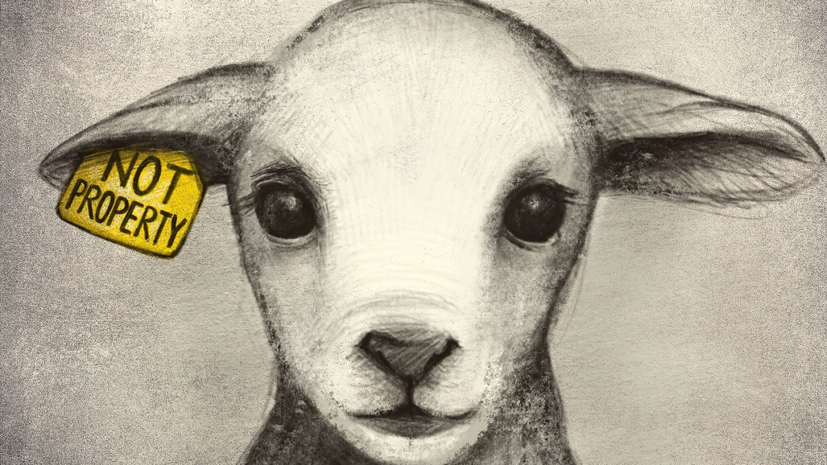 What It Means To Be Vegan