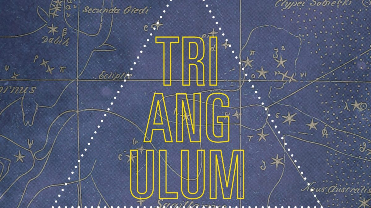 Book Review: Masande Ntshanga's Triangulum