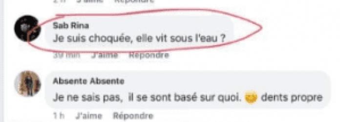Elue miss Algérie 2019, Khadidja Benhamou est victime d'injures racistes...Elle réagit!