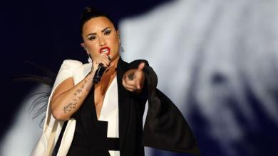 Photo of Demi Lovato settles with a critical fan on Instagram